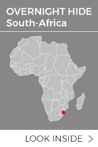 africa_overnight_hide